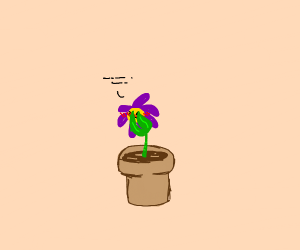 Embarrassed Flower