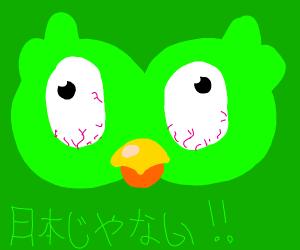 Duolingo says no Japan!