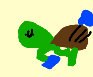 """The """"Kick the Can"""" Turtle"""