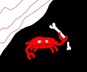 Crab breaking a bone