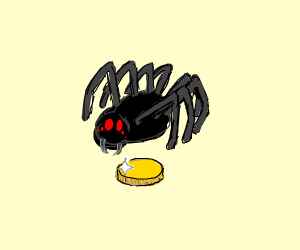 spider with a coin