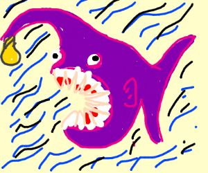 Purple angler fish