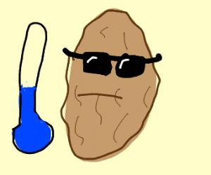 Cool Walnut
