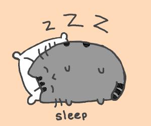 pusheen the cat sleeping