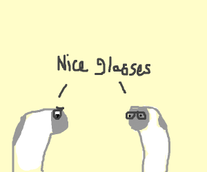 Socks compliment each other's glasses