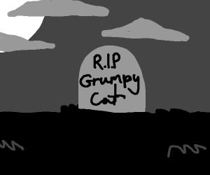 R.I.P Grumpy cat :c