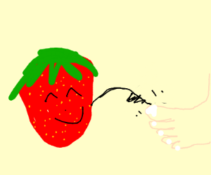 Happy strawberry tickles a foot