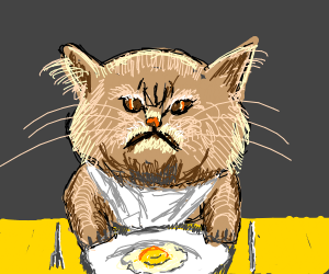 A cat eating fried egg