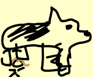 short girl with a siberian husky