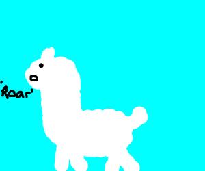 Llama roars