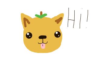 "happy cute orange doggo says ""Hi!"""