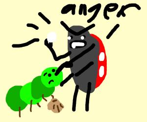 ladybug angry at caterpillar