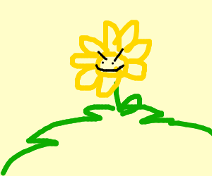 flower on a hill