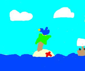 Bird on an Island
