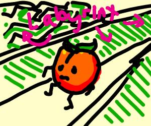 Lost Peach