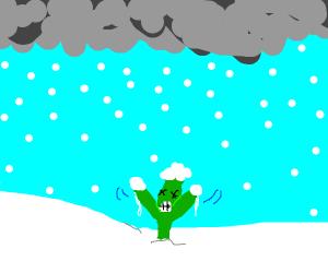 Plant freezes to death