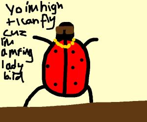 Ladybird rapper
