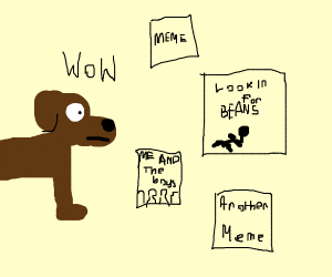 Dog wowed by memes