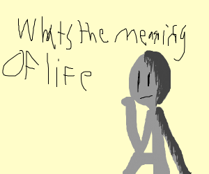 Wonder the meaning of life