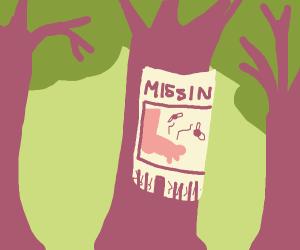 Missing foot