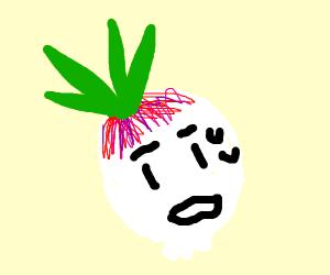 shy turnip