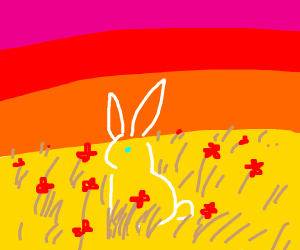 bunny in a field with flowers
