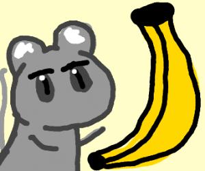 Banana and mouse
