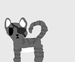angry eyepatch cat