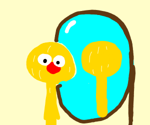 Yellmo stares into mirror