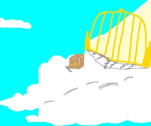 Amazon package in heaven