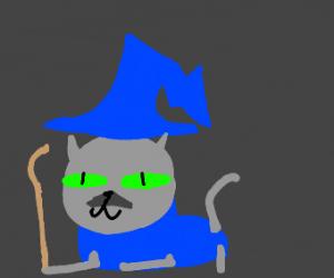 cat mage