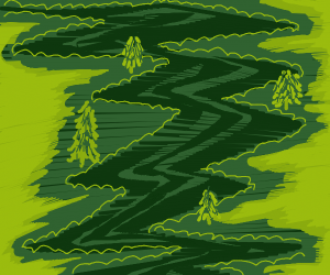 zig zag path in wood with pine