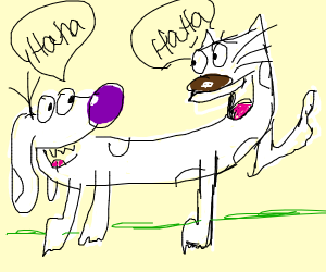 white dog-cat-thing laughing