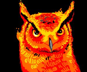 Fire owl