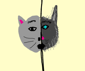Scared grey cat wolf thing