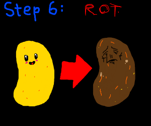 Step 5: enjoy your time as a chip