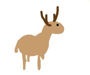 Deer or reindeer