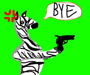 a zebra with a gun