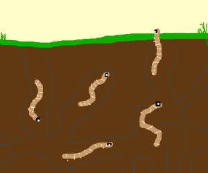 five earthworms