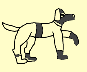 Dog Ninja
