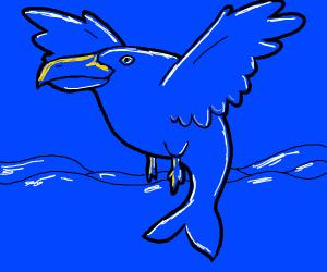 seagull but not a bird likea whale