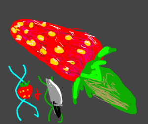 Genetically engineered strawberry-knife hybri