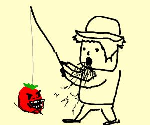 Reeling in a Tomato