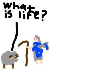 Wooloo (Pokemon) saying what is life