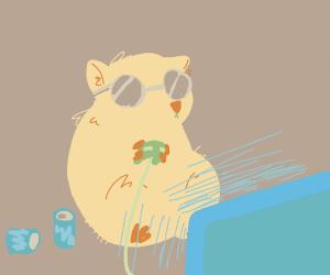 Nerd hamster