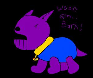 Thanos as a doggo