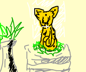 Scared Cheetah