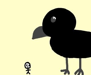 Das a big crow.