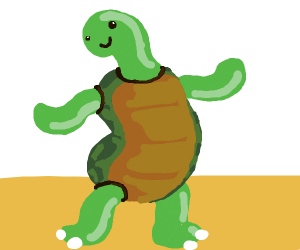 Turtle does wriggly dance