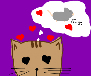cat loves gay mouse